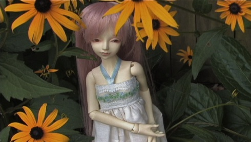 1yume-in-sunflowers