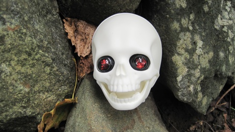 Unpainted skull with Ersa Flora Halloween eyes