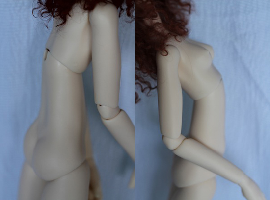 Torso joint moved forward and back (nude body photos by Kaye Wiggs)