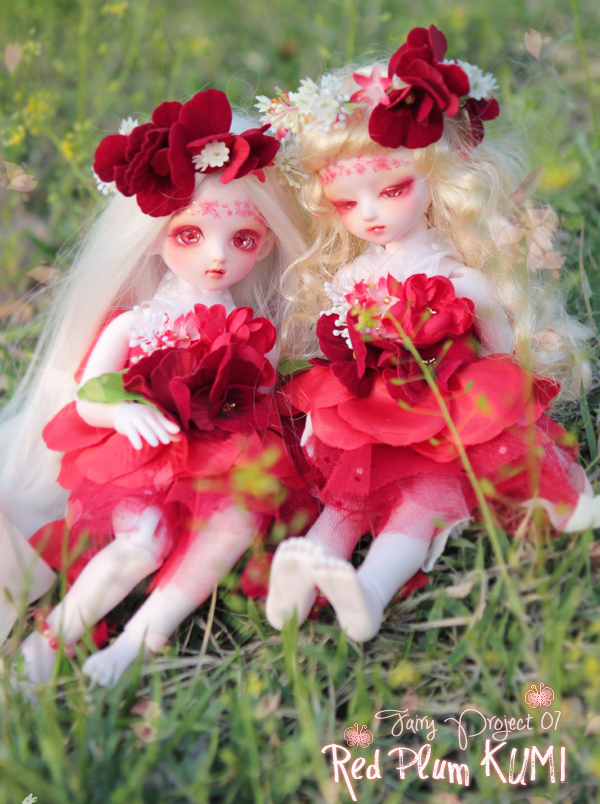 red plum fairy kumi