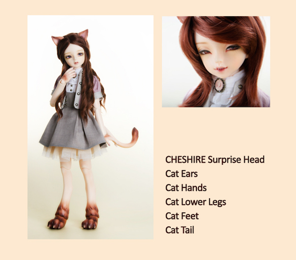 Cheshire - My Brownie