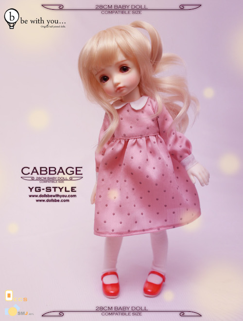 cabbage_d_01